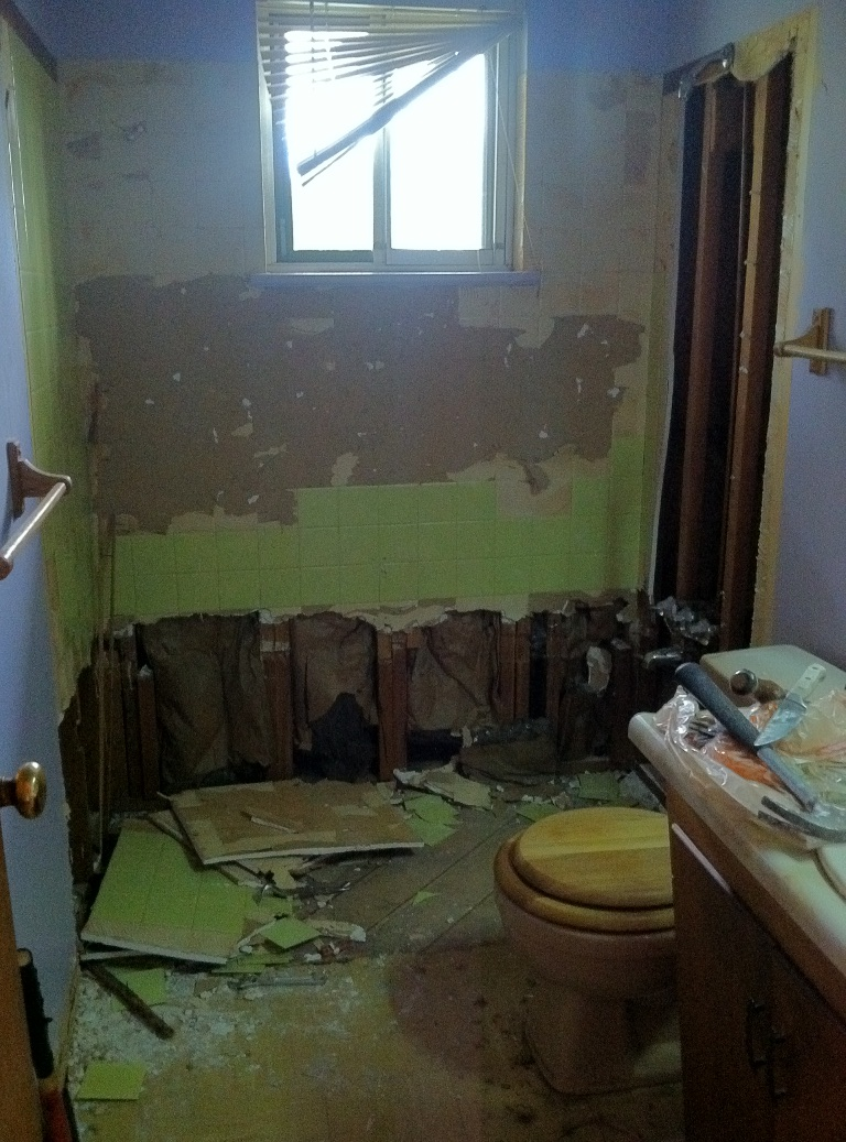 Bathroom renovations zounds for How to demo a bathroom