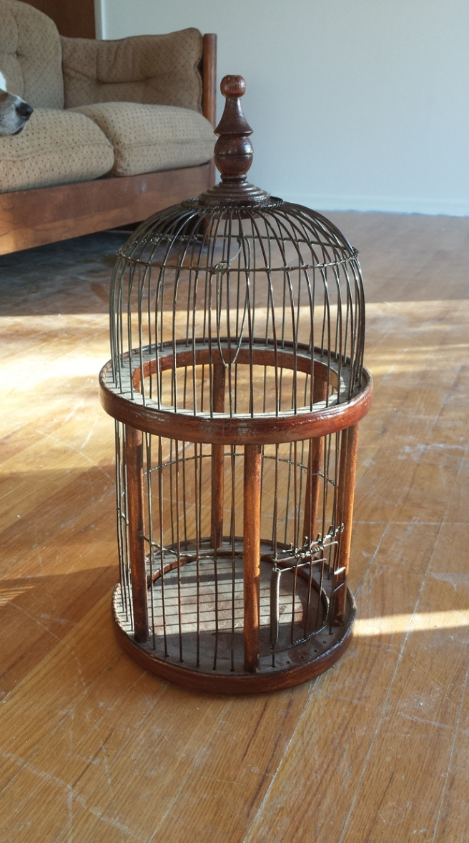 Birdcage Home Decor 28 Images Thrift Store
