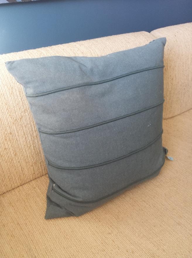 20 x 20 Thrift Down Pillow